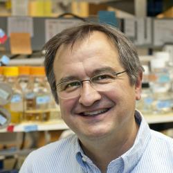 Dr. Paul Herman