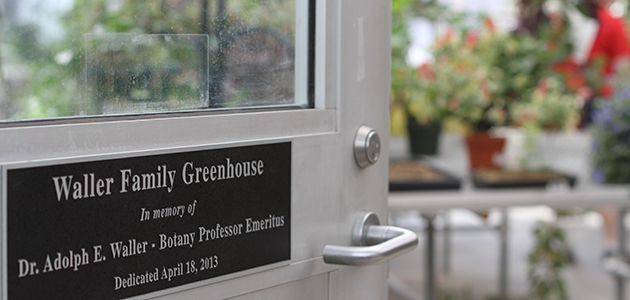 Waller Greenhouse Door