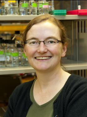 Helen Chamberlin
