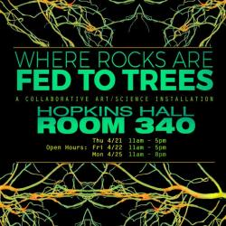 Where Rocks Are Fed To Trees Flier