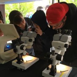 Kid using microscope