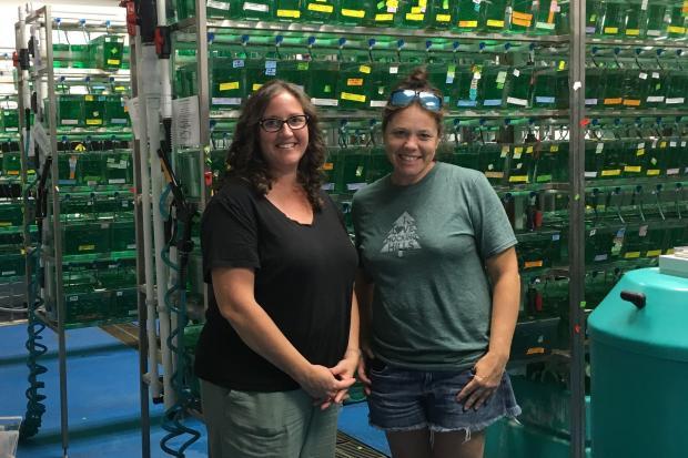 rrington Elementary teachers tour a fish facility