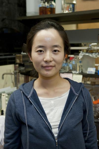 Jingyan Wu