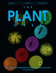 The Plant Cell Cover